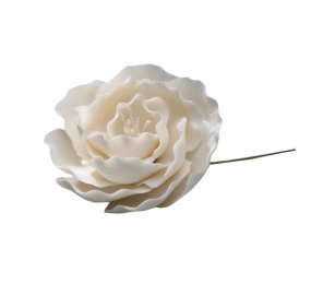 WHITE BRIAR ROSE SUGAR PASTE FLOWER (6)